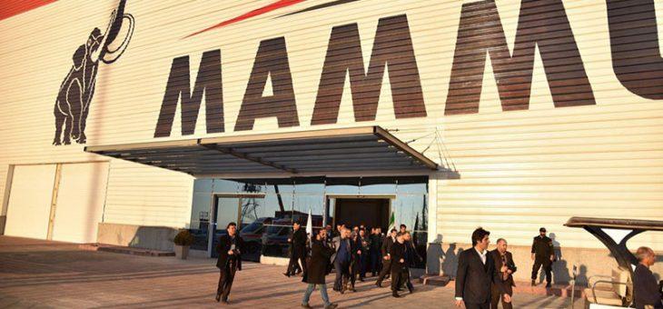 کارخانه ماموت – درباره شرکت ماموت
